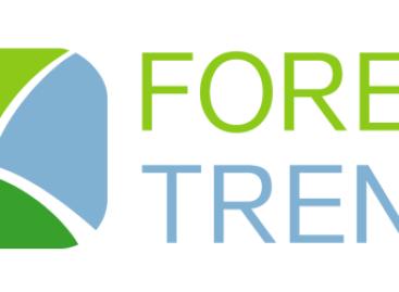 Форекс Тренд официально объявил себя банкротом