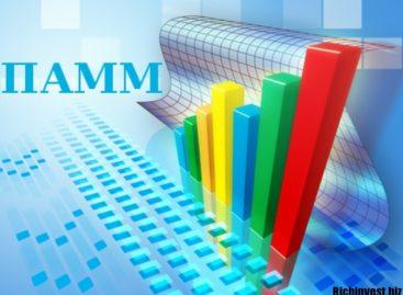 От чего зависит доходность ПАММ-счетов?