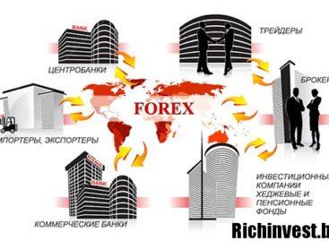 Какие бывают участники финансового рынка?