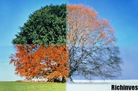 Сезонность хайпов: как правильно проводить анализ?