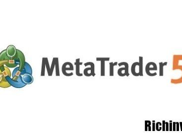 Торговый терминал MetaTrader 5: полное руководство для чайников