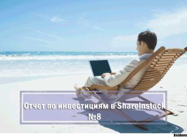 Отчет об инвестировании в Shareinstock №8