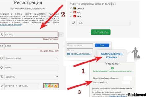 Обзор белоруской электронной платежной системы Easypay
