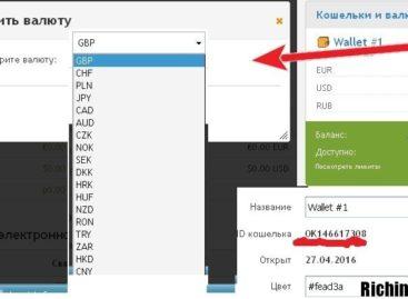 Особенности работы с оператором электронных денежных средств OKPAY