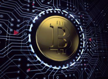 В какую криптовалюту инвестировать?