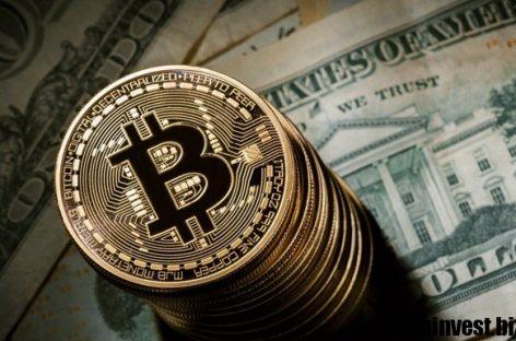 Криптовалюты в платформе Verum Option: зарабатывайте на инновациях!