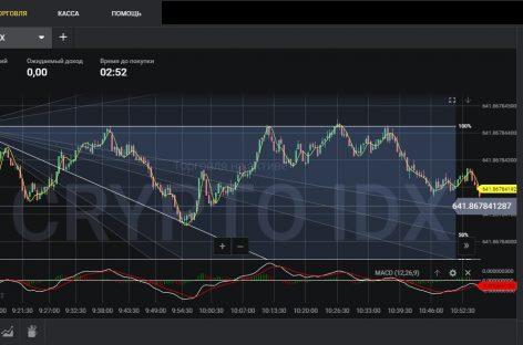 Простая стратегия опционов для крипто валютных активов «Pixy»