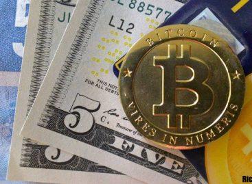 Инвестиции в криптовалюту: с чего начать, куда вложить деньги, возможные риски