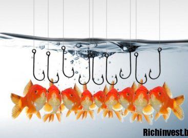 Стратегия «Рыбалка» для бинарных опционов: как работает, особенности применения, отзывы