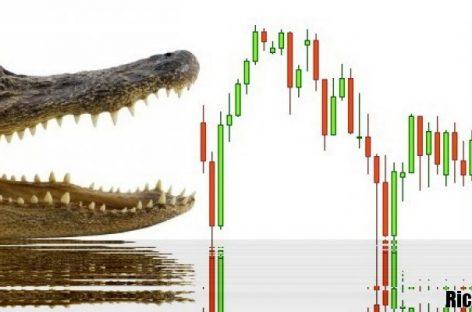Индикатор Аллигатор для бинарных опционов: особенности использования и настройки инструмента