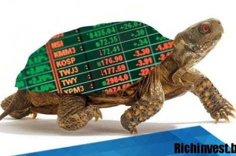 Прибыльный алгоритм для рынка Форекс «Черепаховый суп»